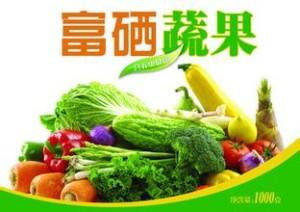 水果、蔬菜中的农药残留检测权威机构